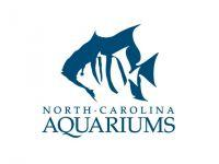 NC Aquariums Discount